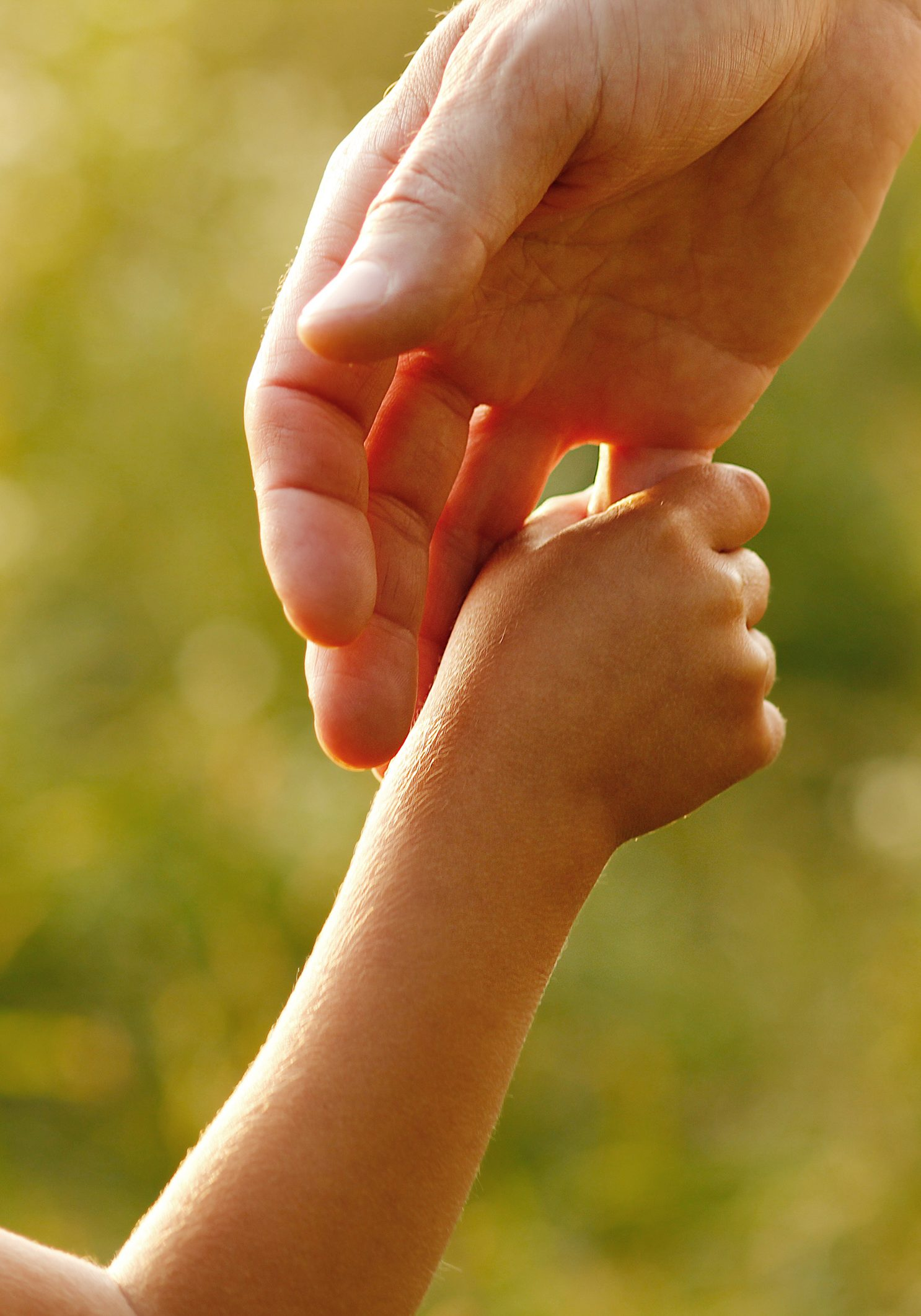 A parent holding the hand of their small child in the grass.